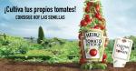 gratis semillas de tomate Heinz