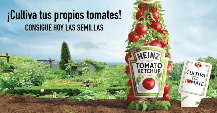 ¡Pide gratis semillas de tomate Heinz!