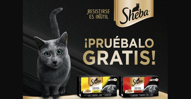 Solicita gratis la comida para gato Sheba